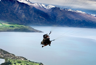 new_zealand_orbitz